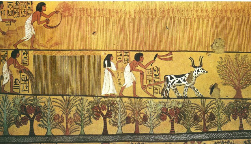 Agriculture in Ancient Egypt - Explore Egypt Tours